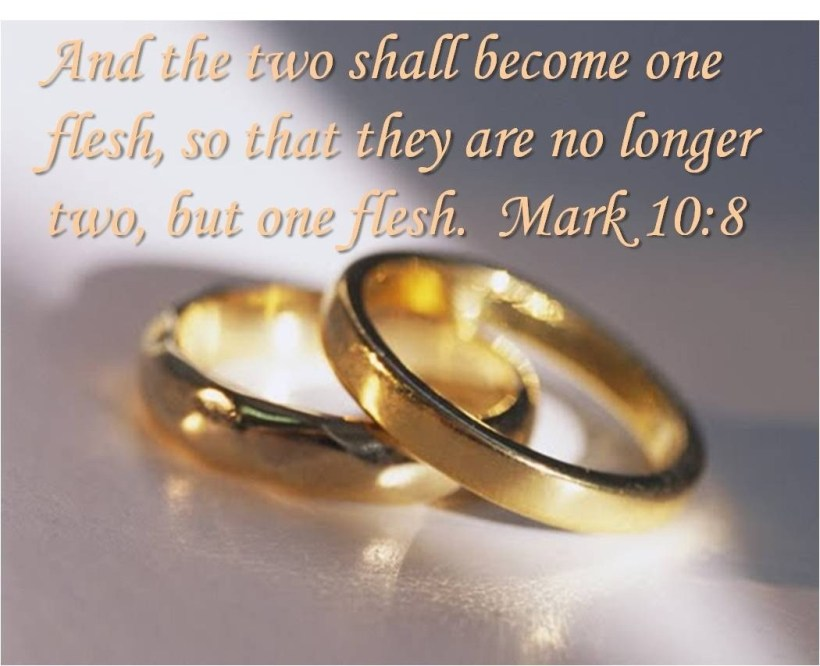 godly-marriage-two-shall-become-one-flesh-72233743